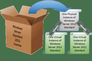 Windows Server Standard License with Guest Privileges