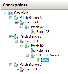 Checkpoint Example
