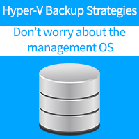 Hyper-V Backup Strategies: Don't Worry about the Management OS