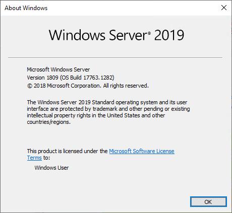 Windows Server 2019 Standard Edition