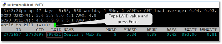 Using the LWID value to terminate a VM
