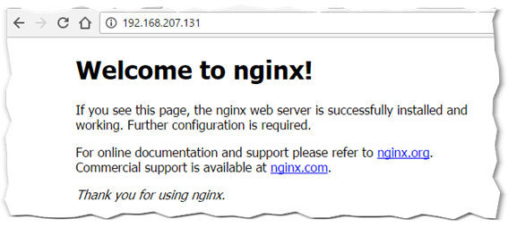 Figure 10 - nginx web server running on a container accessed via a published port