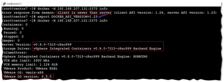 Figure 7 - Setting Docker environment variables on Centos