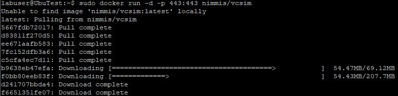 Run the VCSIM container