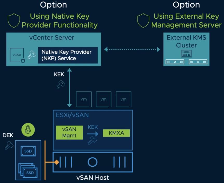vSan Host Options